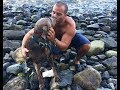 A Stranger Risks His Life To Rescue A Dog Stranded In The Water