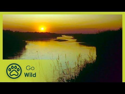 Drava - River of Peace River of World