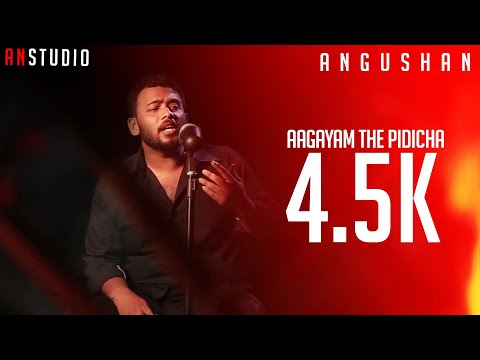 Agayam Theepiditha cover by Angushan