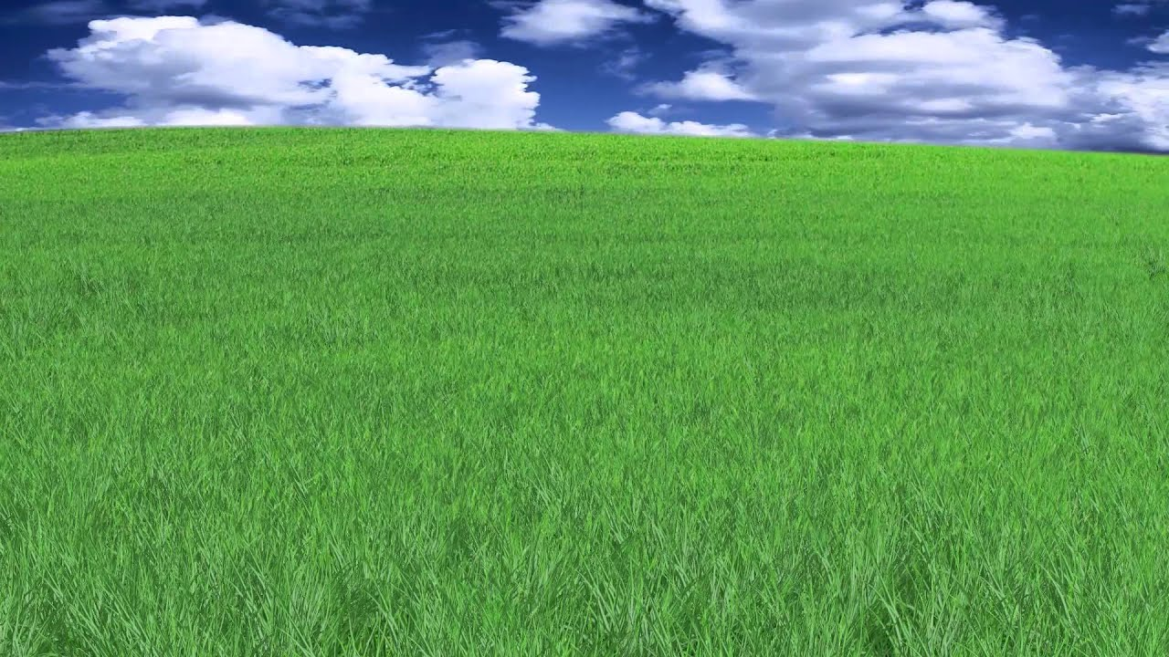 Animated grass images galleries with for Pretty grass