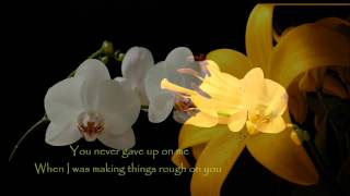 You Never Gave Up On Me - Crystal Gayle