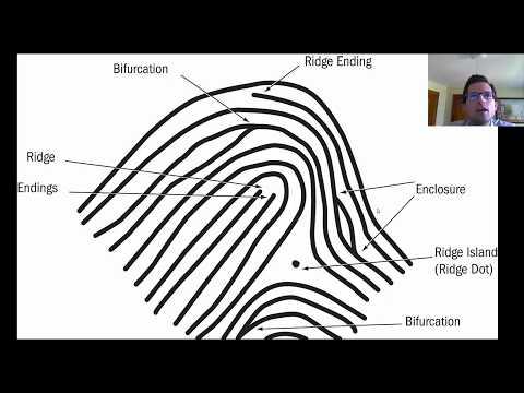 2. Fingerprinting Introduction