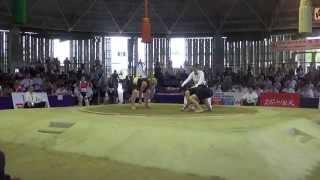 Чемпионат мира по Сумо 2015 г.Осака,Япония. (RUS vs JPN)