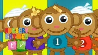 FIVE LITTLE MONKEYS   5 Little Monkeys. Cute Baby Toddler Preschool Baby Songs.