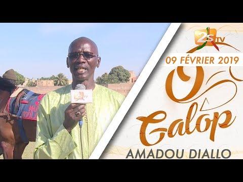 O GALOP DU 09 FÉVRIER 2019 AVEC AMADOU DIALLO