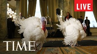 Turkey Pardon: President Trump Pardons National Thanksgiving Turkey In Annual Ritual | LIVE | TIME