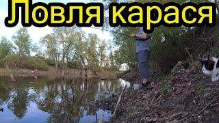 Рыбалка на карася Супер клёв май 2021