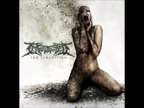 Ingested - Crowning The Abomination