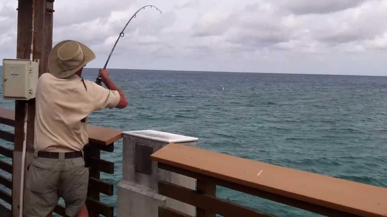 Bonita fish snaps line at juno pier in florida youtube for Juno pier fishing report