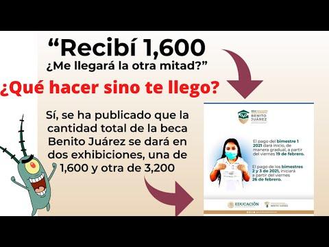 Qué Hacer sino te ha llegado la Beca Benito Juárez - Solución marzo 2021