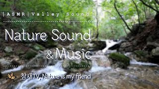 Relaxation Nature Sound│Valley…