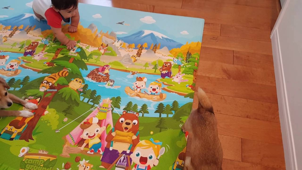 2016 7 Baby Care Play Mat Review