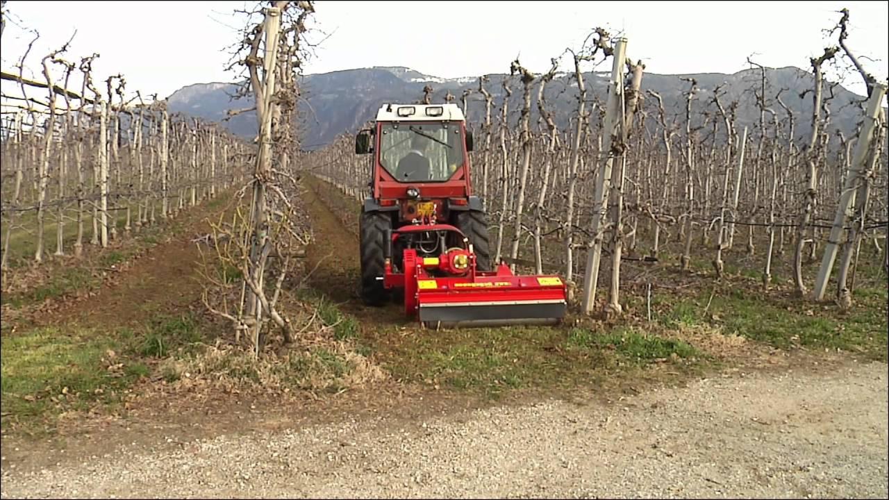 Berühmt Leichter Mulcher SMWO für Wein- und Obstbau - SEPPI M. S.p.A &AL_75