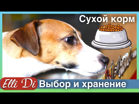 Купить корм для собак недорого в интернет-магазине оби. Выгодные цены на лакомства и сухой корм для собак. Доставка по москве, санкт-петербургу и россии.