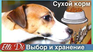 Сухой корм для собак - как выбрать и хранить корм? Уход за собакой с Elli Di.