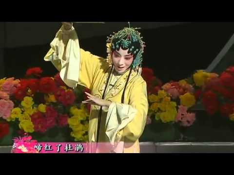 "Ancient Chinese Kunqu-Opera ---  ""The Dream in Visiting the Garden"""
