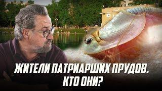 """""""Жители Патриарших прудов. Кто они?"""""""