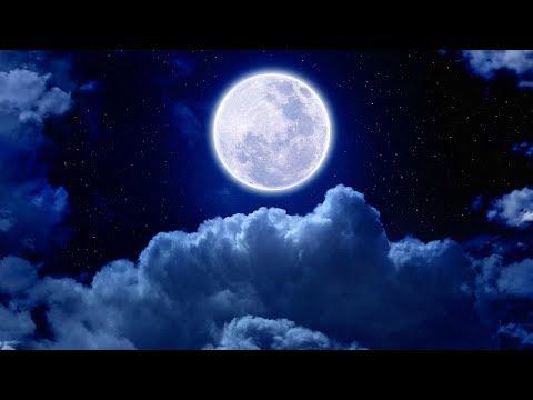 Sleep Music 24/7, Sleep Therapy, Insomnia, Sleep Meditation, Calm Music, Spa, Relax, Study, Sleep