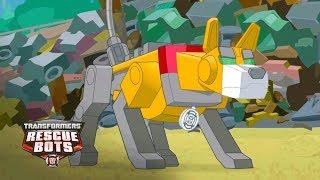 Transformers: Rescue Bots Season 3 - 'Four-Legged Hero' Official Clip