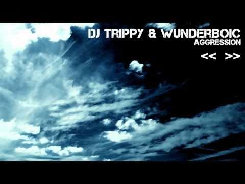 [03/13] DJ Trippy & WunDerboiC - Aggression