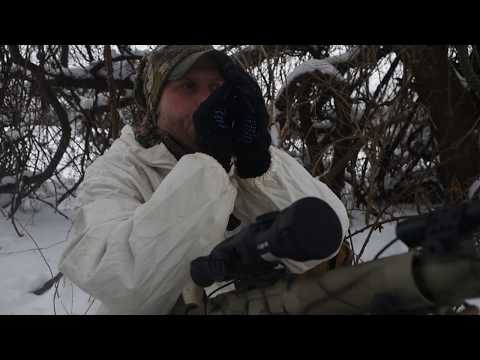 Tips On Coyote Hunting In Northern New York