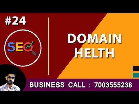 Seo Tutorial in Hindi Domain Health Check 24 thumbnail