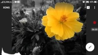 cách tách phần màu và đơn sắc trong ảnh trên snapseed