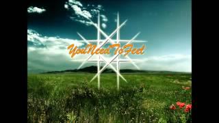 Roy Rosenfeld - Fields (Mellow Mix)