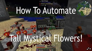 How To Automate Tall Mystical Flowers