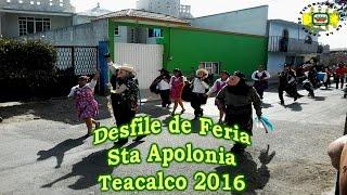 Desfile de Feria y Carnaval Santa Apolonia Teacalco 2016