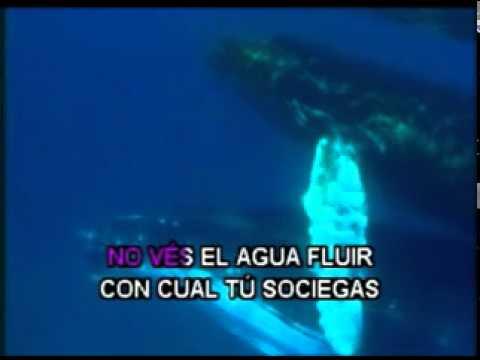 VIVES KARAOKE - COSTA RICA - TÚ VIVES - JULISSA.mpg