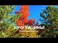 ВЫХОДНЫЕ С ДВУМЯ ДЕТЬМИ/МИРА ГУЛИТ)/КАТАЕМСЯ/НОВЫЙ МАНИКЮР)