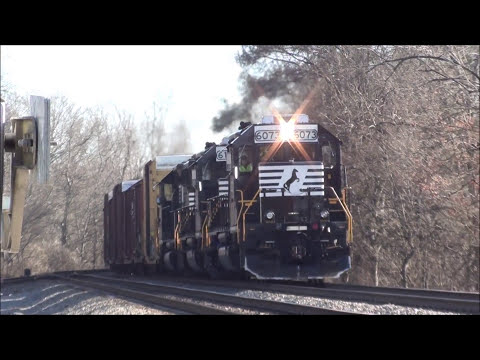 Trains at Soddy Daisy & Tyner, TN & at Graysville, GA ft. CSXT #5500, NS #8105, & DME #3800!