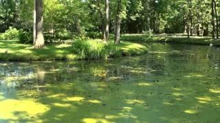Domaine Maizeret Québec - Georges Moustaki - Il y avait un jardin