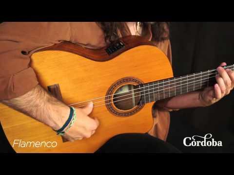 Cordoba Guitars - C5-CE Nylon String Guitar