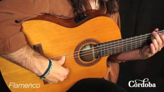 Cordoba Guitars - C5-CE Nylon String Guitar