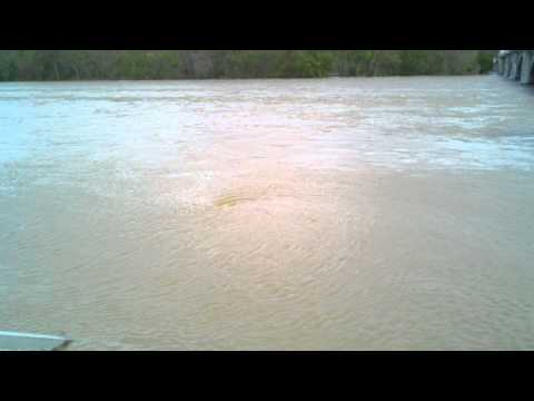 The very high Susquehanna river and whirlpool.