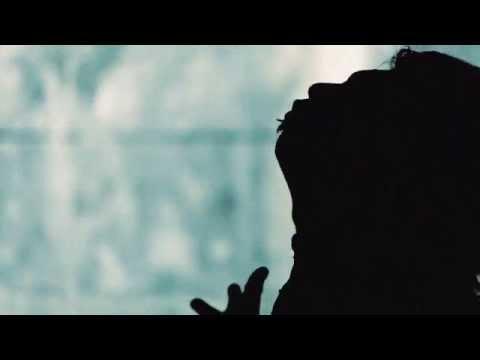 【Vorchaos】Singularity【MV】