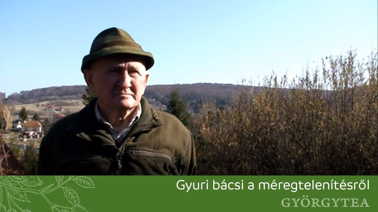 szabó gyuri bácsi májtisztítás)