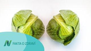 Příznivý vliv zelných listů na zduřelá prsa
