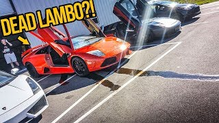 My Fast & Furious Lamborghini BLEW UP At A SUPERCAR REV BATTLE