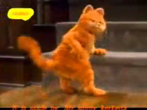 funny video Munny badnam cat & dog dance
