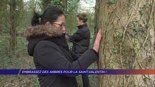 Yvelines | Embrassez des arbres pour la Saint-Valentin!