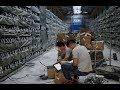Arkano036 - YouTube