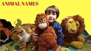 Zack Learn Animal Names with Toys for Kids - lion tiger monkey elephant shark dog