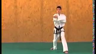 ITF Taekwon Do Patterns | Ge Baek