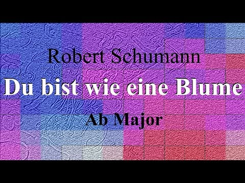 Du bist wie eine Blume - Robert Schumann - accompaniment in Ab major