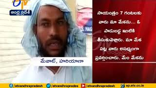 Pregnant goat dies after being gang raped by 8 men in Haryana