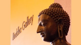 Our visit to the Buddha Collection at The Birmingham Museum England August 2015