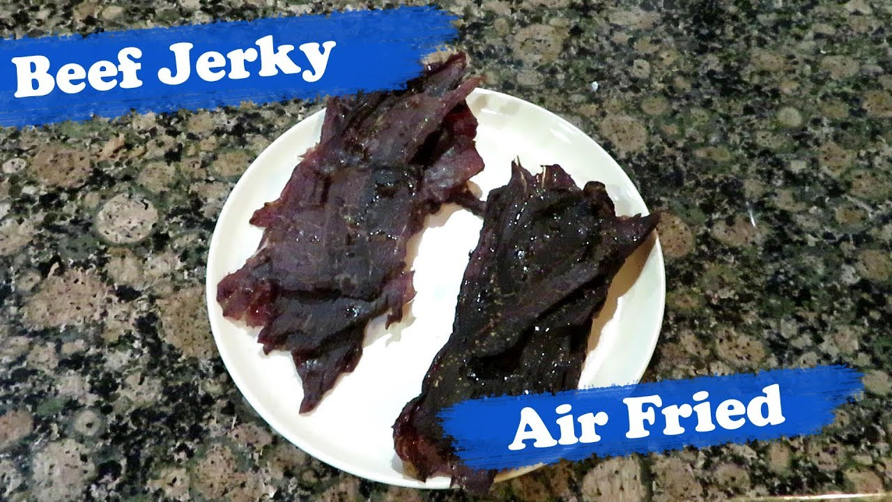 Power Air Fryer Oven Dehydrator Recipes